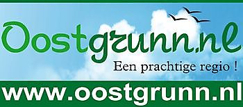 Oostgrunn.nl Beerta Serviceregelen.nl Elektra